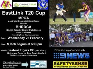 EastLink T20 Cup Promotional Flyer 2014 v3
